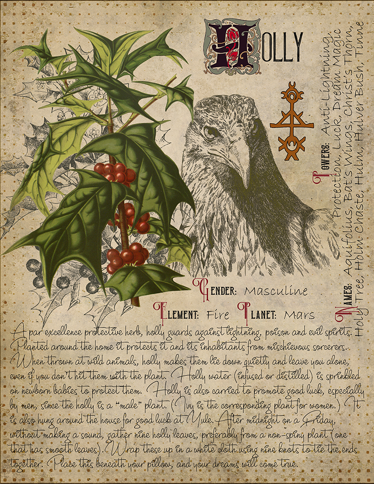 Book of Shadows, Printable page of Holly